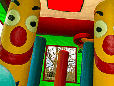 Entertaining Inflatables