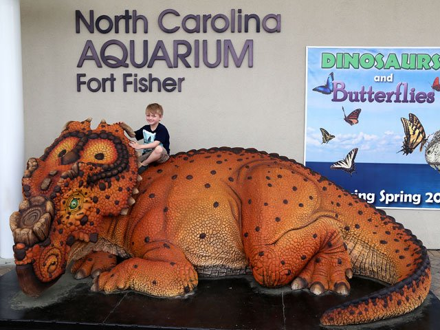 dinosaurs and butterflies at fort fisher aquarium