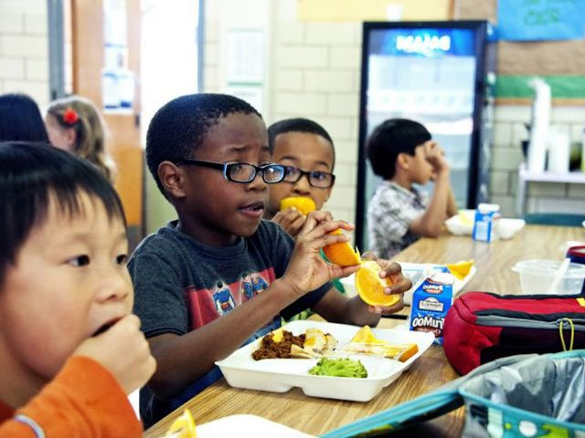 Lunchtime Options For A Peanut Free Classroom