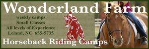 Wonderland-300x100 2018 Camp Sponsor