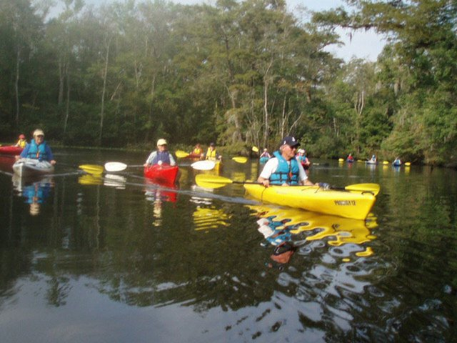 Rice Creek Kayak tour - photo by NCMM Southport.jpg