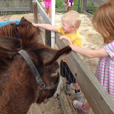 Petting-Farm---kids.jpg