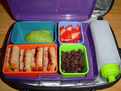 Laptop Lunchbox