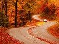 Fall-Visit NC