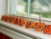 egg carton pumpkins 4.jpg