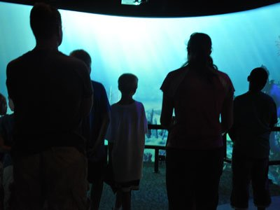 Aquarium offers free day Aquarium free days